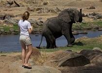 elephant_woman2