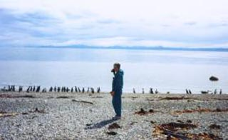 Checking out accidentally discovered penguins following a car breakdown north of Punta Arenas, Chile 1990