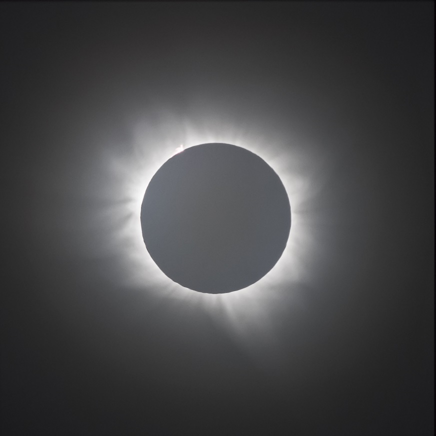 faser_totality2